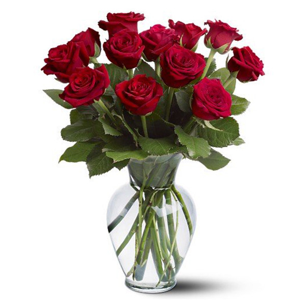 12 Long Stem Red Rose Special buy at Florist