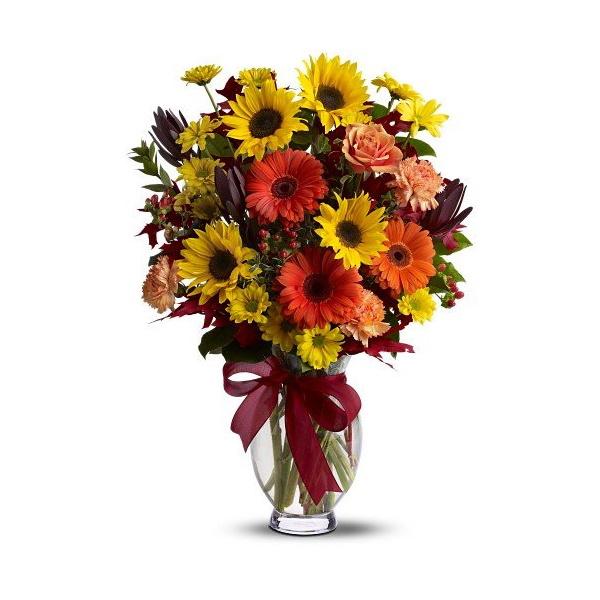 Autumn Glory buy at Florist