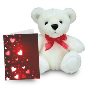 Teddy and Card Special buy at Florist